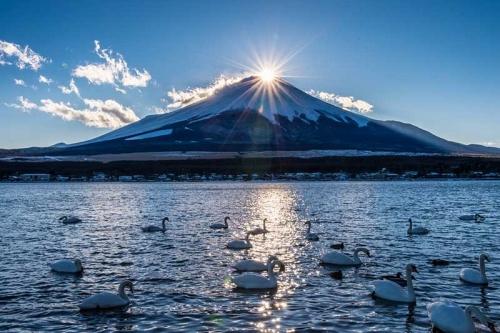 NARITA - FUJI - TOKYO - NARITA 5N4Đ Hái Trái Cây - Tắm Khoáng Nóng Onsen